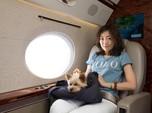 Traveler Habiskan Uang hingga Rp 63 Triliun Buat Bagasi