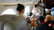 VIDEO: Penerbangan Mewah Anjing Peliharaan dengan Jet Pribadi