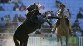 Seperti koboi di Amerika Serikat, guacho hidup dalam kebudayaan masyarakat Amerika Selatan dengan beragam cerita dan mitos. (REUTERS/Andres Stapff)