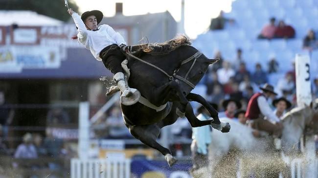 Ketika para guacho usai melaksanakan tugasnya, mereka menunggang kuda menuju lahan terbuka lainnya untuk berpetualang. (REUTERS/Andres Stapff)