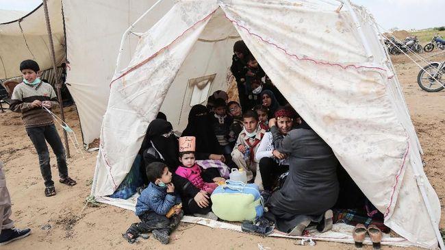 Saudi Janji Beri Rp726 Miliar untuk Pengungsi Palestina