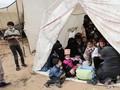 AS Setop Bantuan Dana untuk Pengungsi Palestina