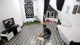 Hotel Kucing Pertama Dibuka di Irak