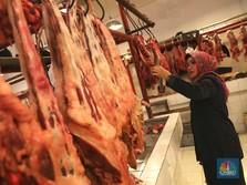 RI Kok Masih Andalkan Impor Daging Sih?