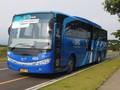 Siap-siap Bayar Tiket Bus Damri dengan Uang Elektronik