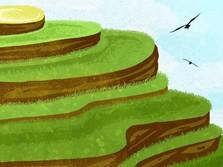 Harga Beras Naik Tinggi, Petani Hanya Gigit Jari
