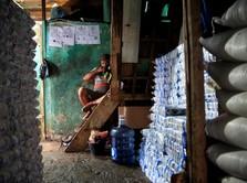 Miris! Impor Garam Bengkak, Produksi Lokal Lagi Pecah Rekor