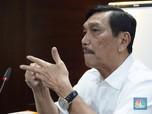 Luhut Sebut Jokowi Segera Umumkan Bos Ibu Kota Baru, Ahok?