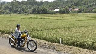 Koleksi Banda Jokowi, dari Pikap Murah Sampai Motor 'Custom'