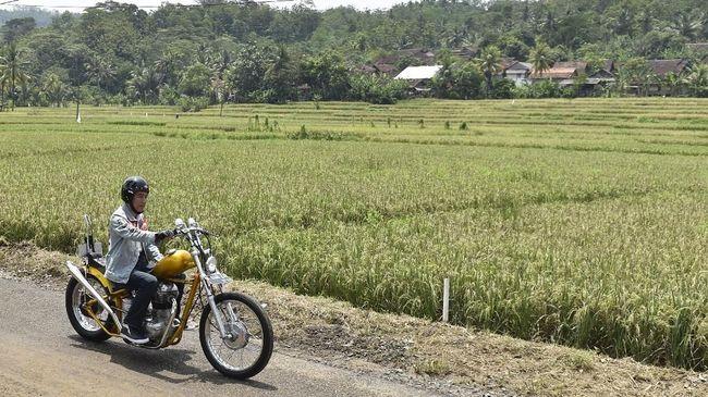Pemuda Ditilang demi Bergaya ala Jokowi Saat Naik Motor