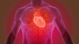 Cardio-PP, Aplikasi Kesehatan Jantung Buatan Mahasiswa ITB