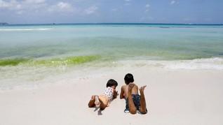 6 Aplikasi Penting untuk Piknik di Pantai