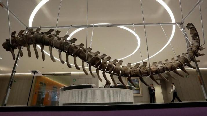 Ada yang Mau Beli Dinosaurus? Ada Dua Dijual di Paris