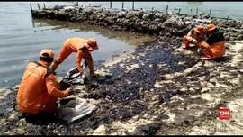 Polisi Periksa 2 Perusahaan soal Minyak Tumpah di Pulau Pari
