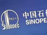 Raksasa China Sinopec Investasi Rp67 T Bukan di Migas, Tapi..