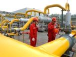 Ibu Kota Pindah, Proyek Pipa Gas Trans Kalimantan Dimulai