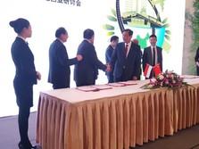 Di China, Luhut <em>Deal</em> Ratusan Triliun Proyek
