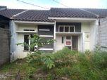 Ini Penampakan 'Rumah Hantu' yang Dijual di Bawah Rp 100 Juta