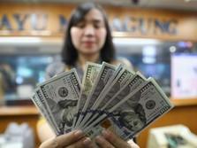 Dolar AS Tak Berdaya di Hadapan Euro, Begini Proyeksinya