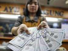 Wah, Cadangan Devisa RI Bakal Terjun US$ 10 M di 2018