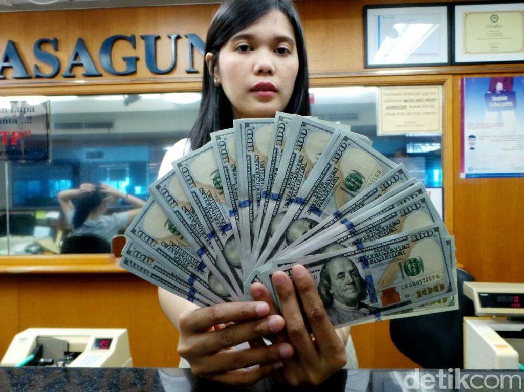Dolar AS Menguat, Begini Kondisi Money Changer Hari Ini