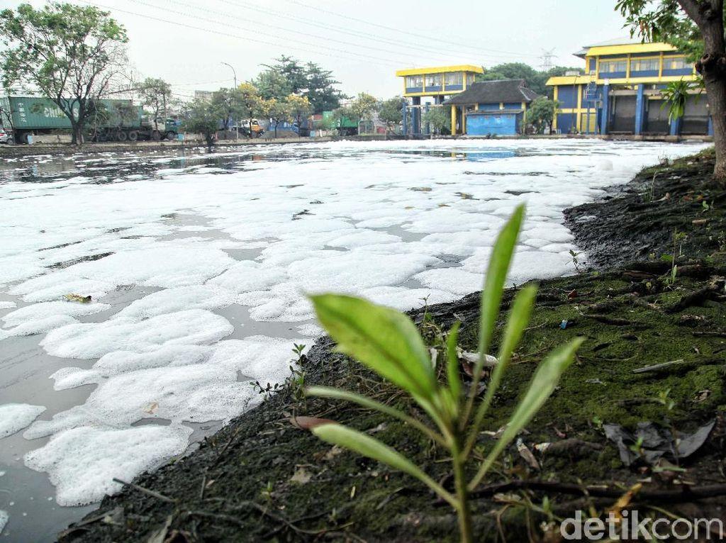 Pemakaian deterjen menyebabkan Sungai Ancol penuh busa.