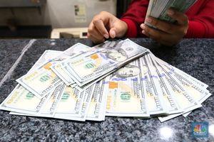 CSIS : Kemungkinan Dolar AS ke Arah Rp 14.000 Tetap Ada