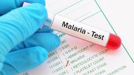 7 Fakta yang Patut Diketahui Seputar Malaria