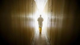 FOTO: Memperingati 32 Tahun Bencana Nuklir Chernobyl
