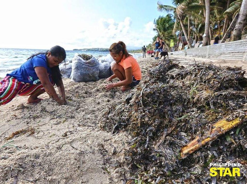 Bersih-bersih Boracay yang Disebut Duterte Penampungan Limbah