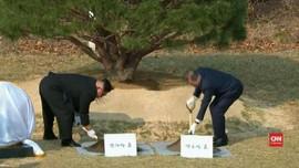 VIDEO: Kim Jong-un dan Moon Jae-in Tanam Pohon Perdamaian