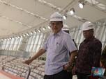 Bos PLN Digeledah KPK, JK: 35 Ribu MW Bisa Terlambat