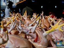 Pedagang: Harga Daging Ayam Naik, Bisa Sampai Rp 60.000/Kg