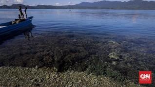 Suhu Laut Memanas Lebih Cepat Akibat Pemanasan Global