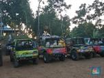 Sensasi Plesiran dengan Jeep di Mangunan Yogyakarta