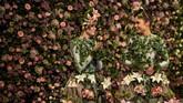 Duet penari Alison Parsons (kiri) dan Georgia Paton-Durrant berpose dengan latar bunga-bunga, saat diselenggarakannya pertunjukan Bunga Musim Semi di Harrogate di Inggris bagian utara. (AFP/Oli Scarff)