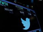 Wah! Netizen Bakal Bisa Hasilkan Duit Langsung dari Twitter