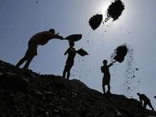 Permintaan di Asia Masih Kuat, Harga Batu Bara Naik