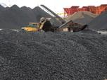 DPR Minta DMO 60%, Saham Emiten Batu Bara Tersakiti