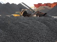 Naik Nyaris 2%, Harga Batu Bara Tembus US$104/ton
