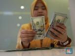 Rentankah Indonesia Terhadap Pelemahan Rupiah?