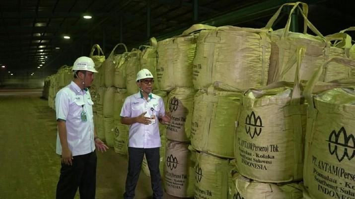 Antam-Vale Temukan Cadangan Emas Raksasa di Sumbawa