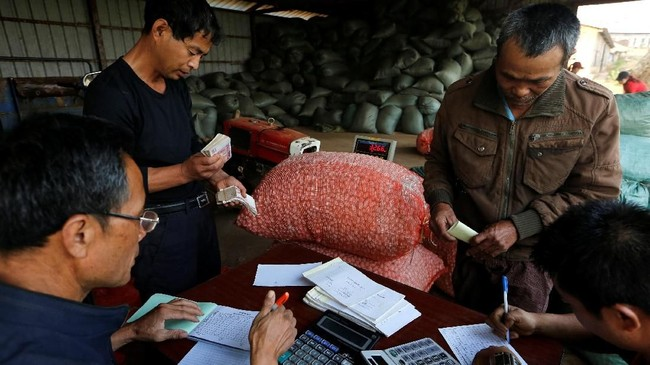 Perusahaan China yang membantu para petani itu mendatangkan setidaknya 50 ahli yang berpengalaman 40 tahun mengembangkan industri sutra di China. (REUTERS/Ann Wang)