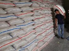 Bulog Harus Impor 500.000 Ton Beras Paling Lambat Juli