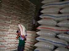 RI Putuskan Kembali Impor Maksimal 500.000 Ton Beras