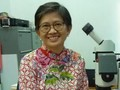 Dwi Rahayu, Satu-satunya Peneliti Kelomang di Indonesia