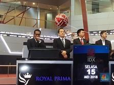 Resmi Tercatat, Saham Royal Prima Sentuh Batas Auto Reject
