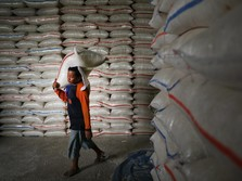 RI Impor 600.000 Ton Beras, Mendag: Tak Ada Pilihan Lain