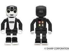 Di Jepang, Anda Bisa Sewa Robot Pendamping untuk Jalan-Jalan