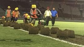 Jelang Asian Games 2018, Rumput SUGBK Dipindahkan